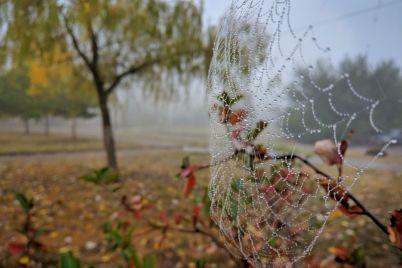 zhitel-zaporozhya-pokazal-tumannoe-osennee-utro-v-spalnom-rajone-goroda-foto.jpg