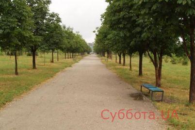 zhitelej-zaporozhya-pugaet-temnyj-park-v-odnom-iz-rajonov-goroda.jpg