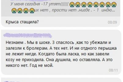 zhiteli-zaporozhskih-sel-zhaluyutsya-na-neproshenyh-pushistyh-gostej.jpg
