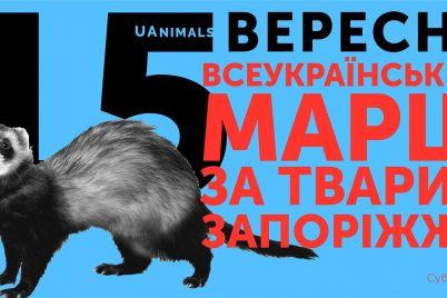 zhiteli-zaporozhya-vyjdut-na-marsh-za-zhivotnyh-foto.jpg