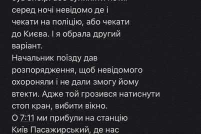zhitelniczu-zaporozhya-izbil-neizvestnyj-muzhchina-v-kupe-poezda-i-popytalsya-iznasilovat-video-foto.jpg