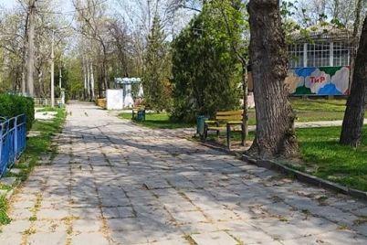 zhutkovato-zhitel-zaporozhya-pokazal-kak-vyglyadit-dubovaya-roshha-bez-lyudej-foto.jpg