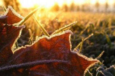 zima-poruch-na-zaporizhzhya-ta-oblast-nasuvayutsya-zamorozki.jpg