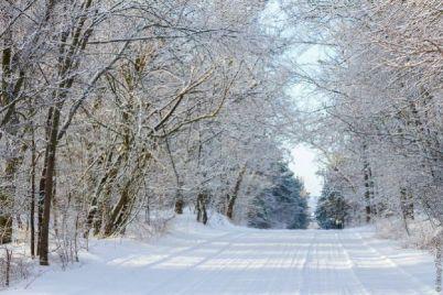 zimoj-na-horticze-zavedetsya-baba-yaga.jpg
